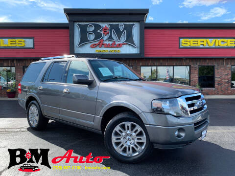 2014 Ford Expedition for sale at B & M Auto Sales Inc. in Oak Forest IL