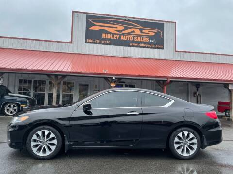 2013 Honda Accord for sale at Ridley Auto Sales, Inc. in White Pine TN