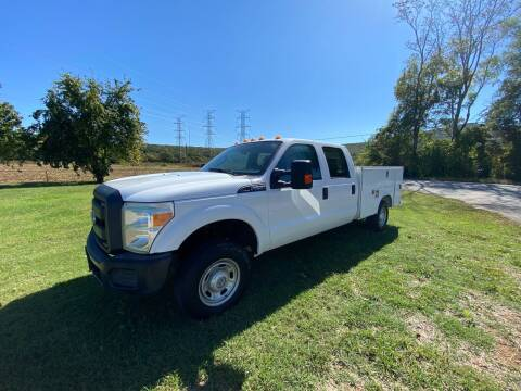 2015 Ford F-250 Super Duty for sale at Tennessee Valley Wholesale Autos LLC in Huntsville AL