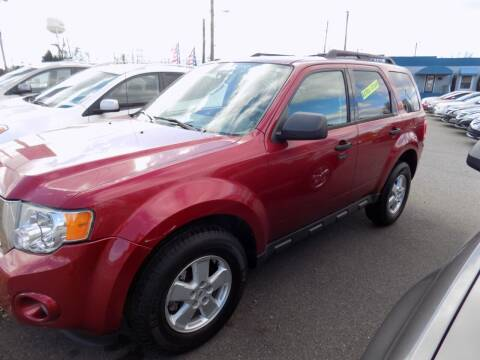 2009 Ford Escape for sale at Pro-Motion Motor Co in Lincolnton NC