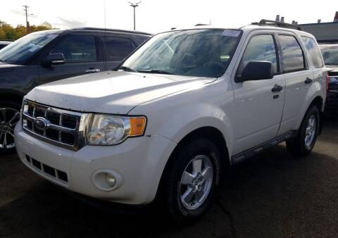 2010 Ford Escape for sale at Angelo's Auto Sales in Lowellville OH