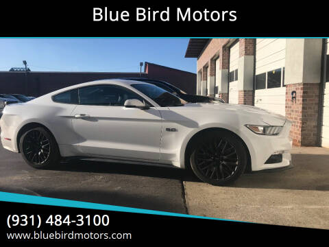 2015 Ford Mustang for sale at Blue Bird Motors in Crossville TN