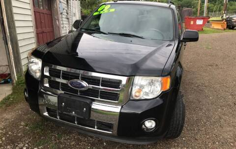 2009 Ford Escape for sale at Richard C Peck Auto Sales in Wellsville NY
