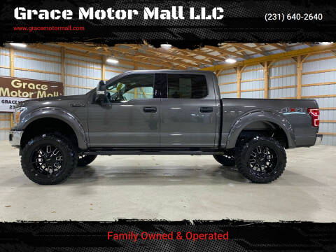 2019 Ford F-150 for sale at Grace Motor Mall LLC in Traverse City MI