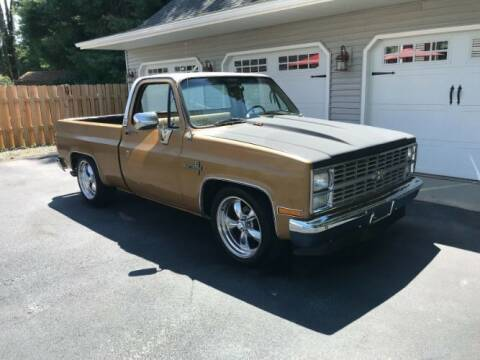 1984 Chevrolet C/K 10 Series for sale at Classic Car Deals in Cadillac MI