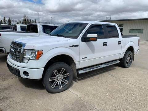 2014 Ford F-150 for sale at Platinum Car Brokers in Spearfish SD