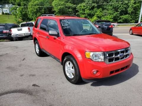 2009 Ford Escape for sale at DISCOUNT AUTO SALES in Johnson City TN