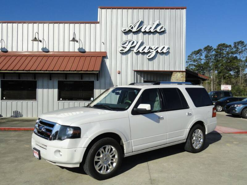 2014 Ford Expedition for sale at Grantz Auto Plaza LLC in Lumberton TX