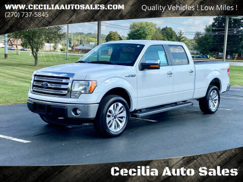 2014 Ford F-150 for sale at Cecilia Auto Sales in Elizabethtown KY