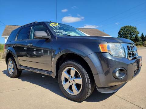 2009 Ford Escape for sale at CarNation Auto Group in Alliance OH