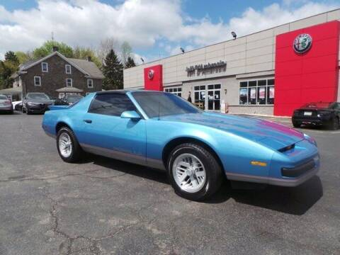 1989 Pontiac Firebird for sale at Jeff D'Ambrosio Auto Group in Downingtown PA