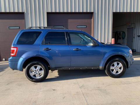 2009 Ford Escape for sale at Dakota Auto Inc. in Dakota City NE