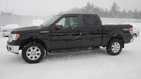 2009 Ford F-150 for sale at Superior Auto of Negaunee in Negaunee MI