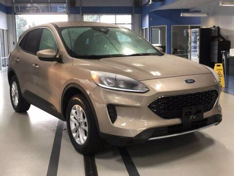 2020 Ford Escape for sale at Simply Better Auto in Troy NY