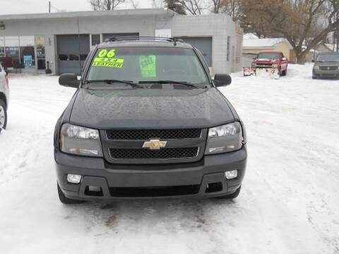 2006 Chevrolet TrailBlazer for sale at Shaw Motor Sales in Kalkaska MI