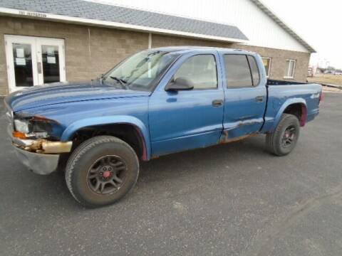 2004 Dodge Dakota for sale at SWENSON MOTORS in Gaylord MN