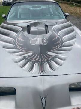 1979 Pontiac Trans Am for sale at Classic Car Deals in Cadillac MI