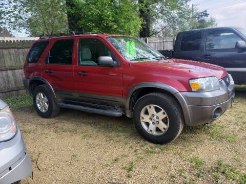 2006 Ford Escape for sale at Northwoods Auto & Truck Sales in Machesney Park IL