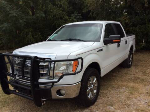 2014 Ford F-150 for sale at Allen Motor Co in Dallas TX