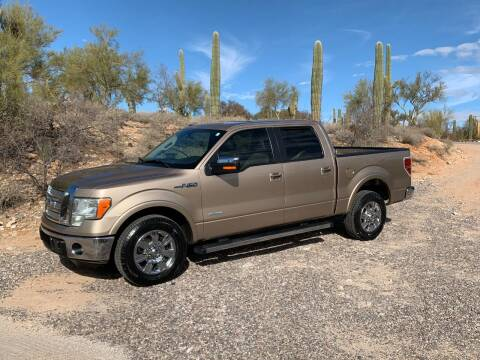 2012 Ford F-150 for sale at Auto Executives in Tucson AZ
