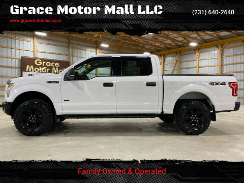 2016 Ford F-150 for sale at Grace Motor Mall LLC in Traverse City MI