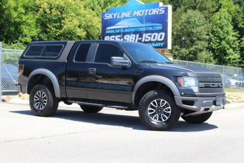 2010 Ford F-150 for sale at Skyline Motors in Louisville TN