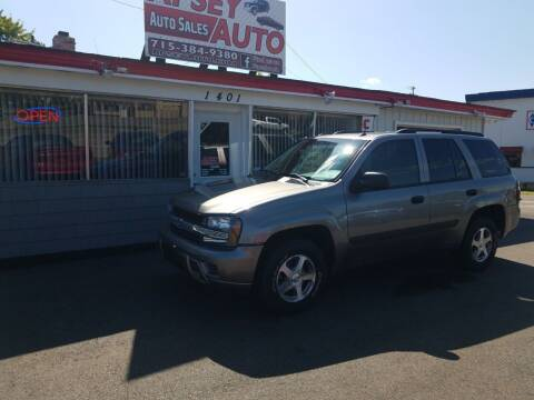 2005 Chevrolet TrailBlazer for sale at Apsey Auto in Marshfield WI