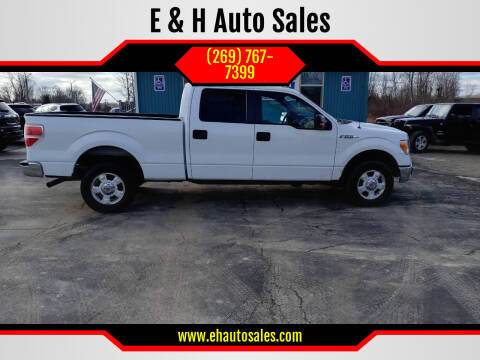 2014 Ford F-150 for sale at E & H Auto Sales in South Haven MI