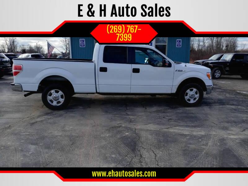 2014 Ford F-150 for sale at E & H Auto Sales in South Haven MI