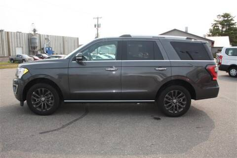 2020 Ford Expedition for sale at SCHMITZ MOTOR CO INC in Perham MN