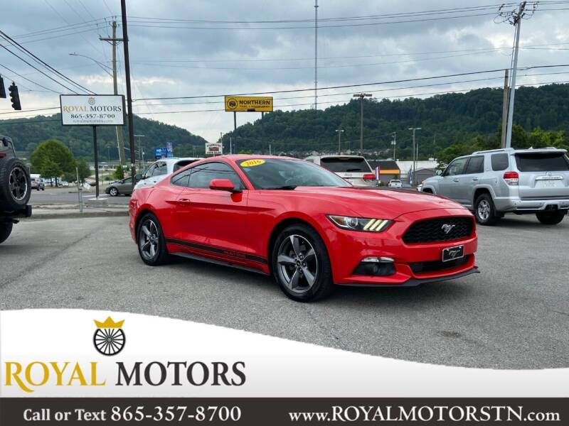2016 Ford Mustang for sale at ROYAL MOTORS LLC in Knoxville TN