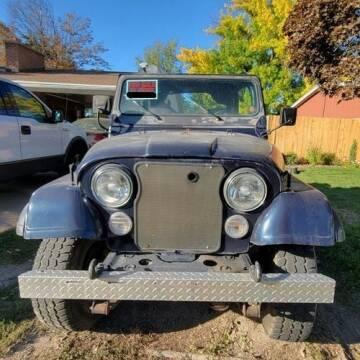 1979 Jeep CJ-5 for sale at Classic Car Deals in Cadillac MI