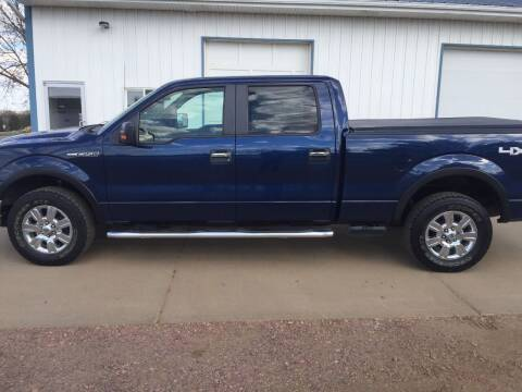 2010 Ford F-150 for sale at Bauman Auto Center in Sioux Falls SD