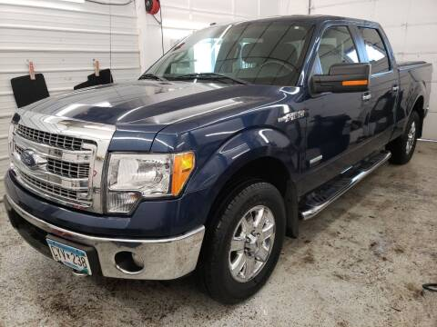 2014 Ford F-150 for sale at Jem Auto Sales in Anoka MN