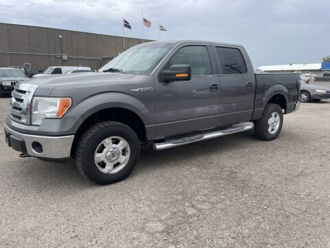 2010 Ford F-150 for sale at Mikes Auto Inc in Grand Junction CO