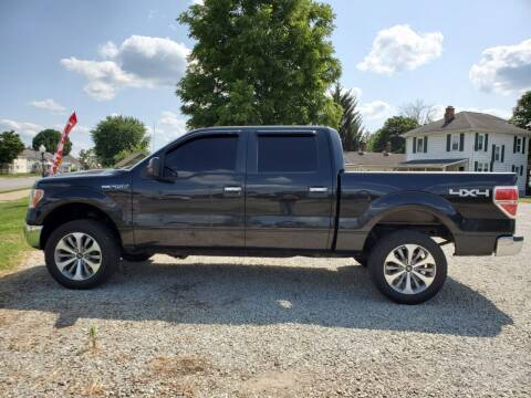 2011 Ford F-150 for sale at MIKE'S CYCLE & AUTO in Connersville IN