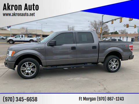 2014 Ford F-150 for sale at Akron Auto - Fort Morgan in Fort Morgan CO