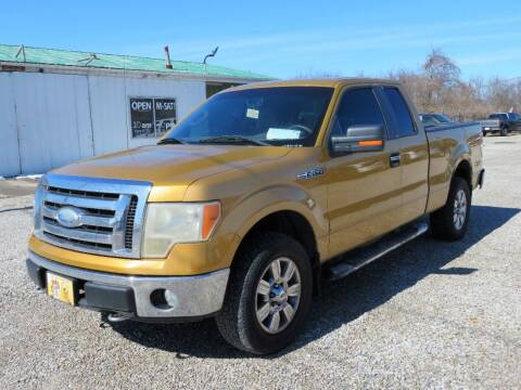 2009 Ford F-150 for sale at Low Cost Cars in Circleville OH