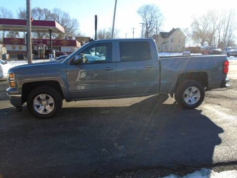 2015 Chevrolet Silverado 1500 for sale at Nelson Auto Sales in Toulon IL