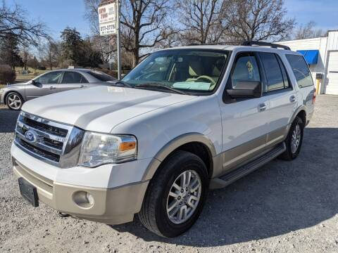 2010 Ford Expedition for sale at AUTO PROS SALES AND SERVICE in Belleville IL