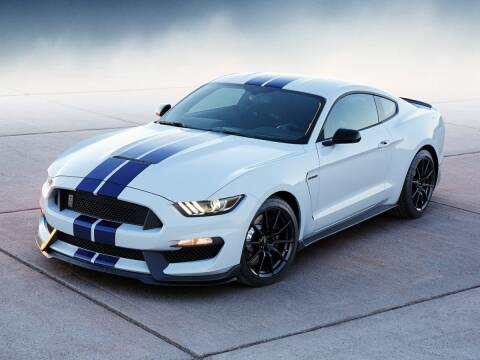 2019 Ford Mustang for sale at Mercedes-Benz of North Olmsted in North Olmsted OH