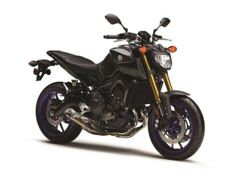 2014 Yamaha FZ-09 for sale at Southeast Sales Powersports in Milwaukee WI