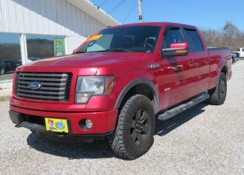 2011 Ford F-150 for sale at Low Cost Cars in Circleville OH