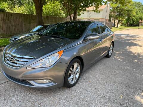 2013 Hyundai Sonata for sale at Demetry Automotive in Houston TX