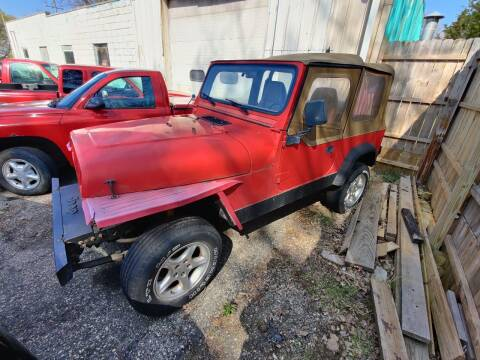1994 Jeep Wrangler for sale at SCENIC SALES LLC in Arena WI