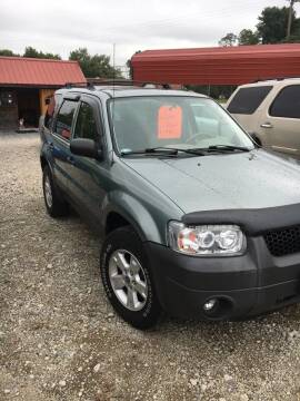 2005 Ford Escape for sale at Simon Automotive in East Palestine OH