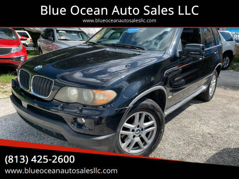2005 BMW X5 for sale at Blue Ocean Auto Sales LLC in Tampa FL