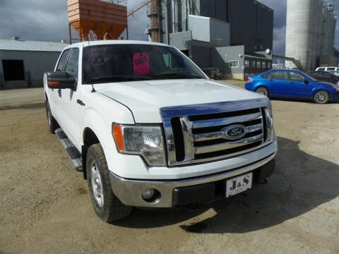 2011 Ford F-150 for sale at J & S Auto Sales in Thompson ND