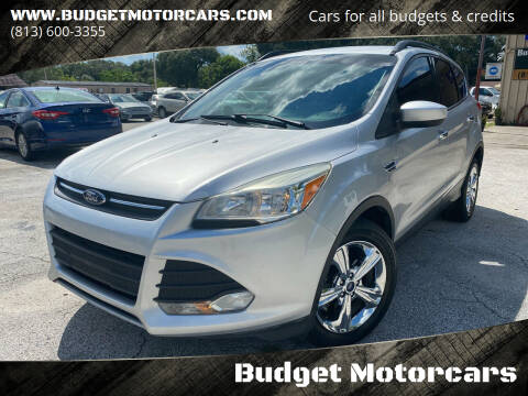 2014 Ford Escape for sale at Budget Motorcars in Tampa FL
