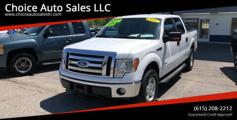 2011 Ford F-150 for sale at Choice Auto Sales LLC - Cash Inventory in White House TN